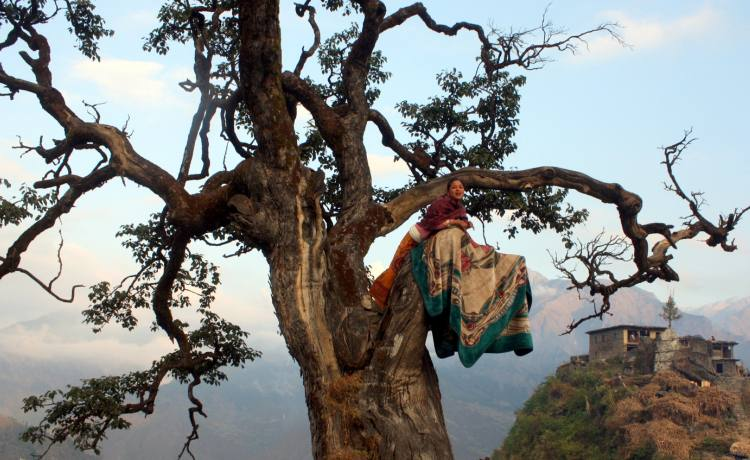 Adventure is calling in rugged western Nepal...discover the wild west on the fascinating Guerrilla Trek.